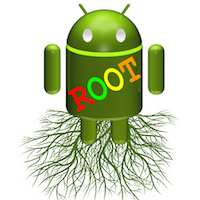 Root00