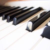 plumeria-music